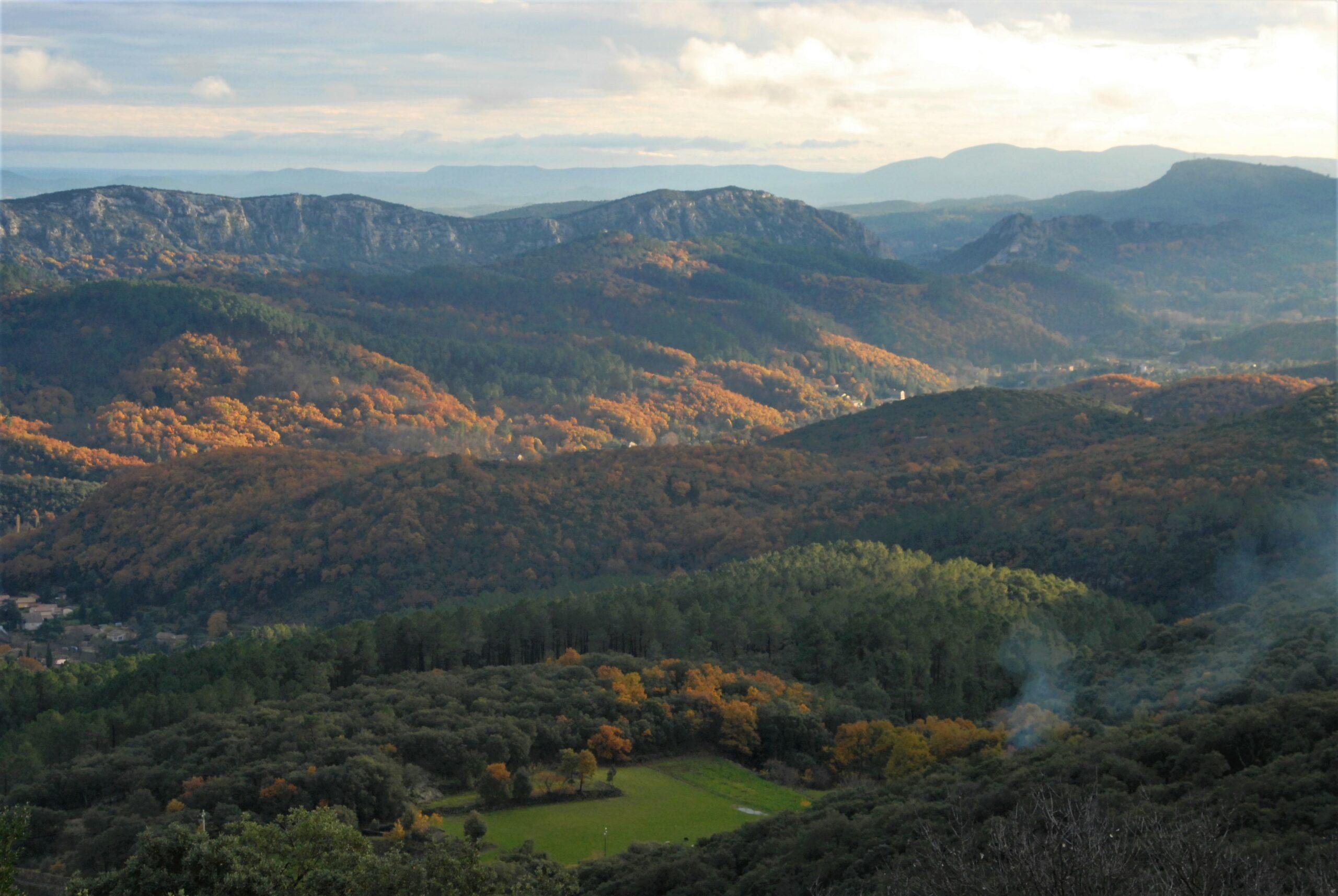 Le 27 octobre Réunion forestière publique