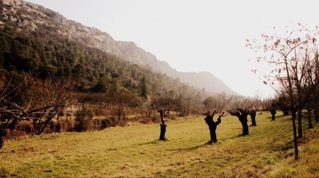 la vallée des Gypières